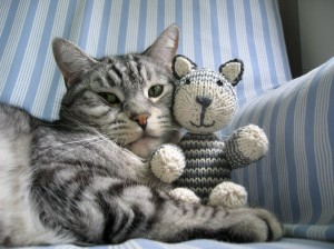 A knitted cat and a real cat together